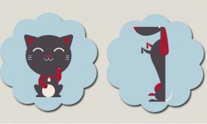 vetement accessoire chien chat aliexpress
