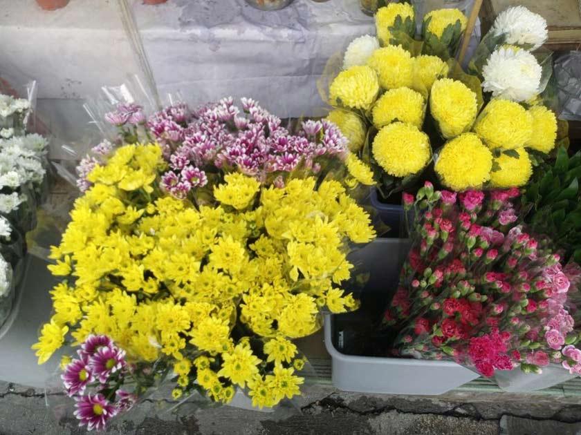 xiaomi mi mix photo fleur